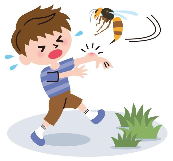 ハチの巣の駆除