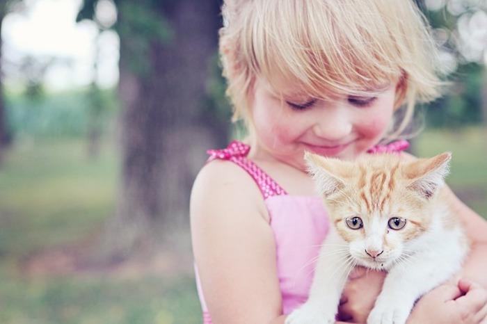 猫と触れ合う女の子